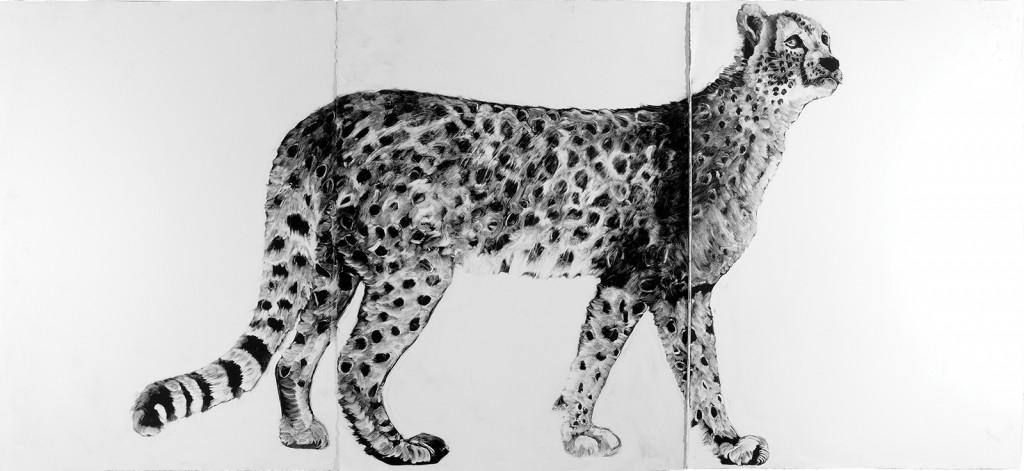 Cheetah-FINAL