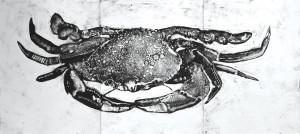 Crab-FINAL