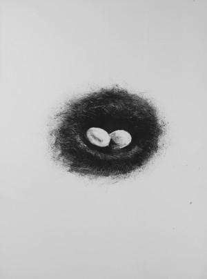 Nest-FINAL