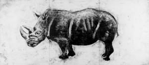 Rhino-FINAL