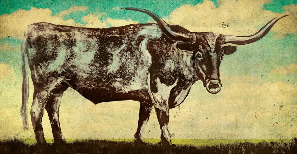 Steer-print-1600px