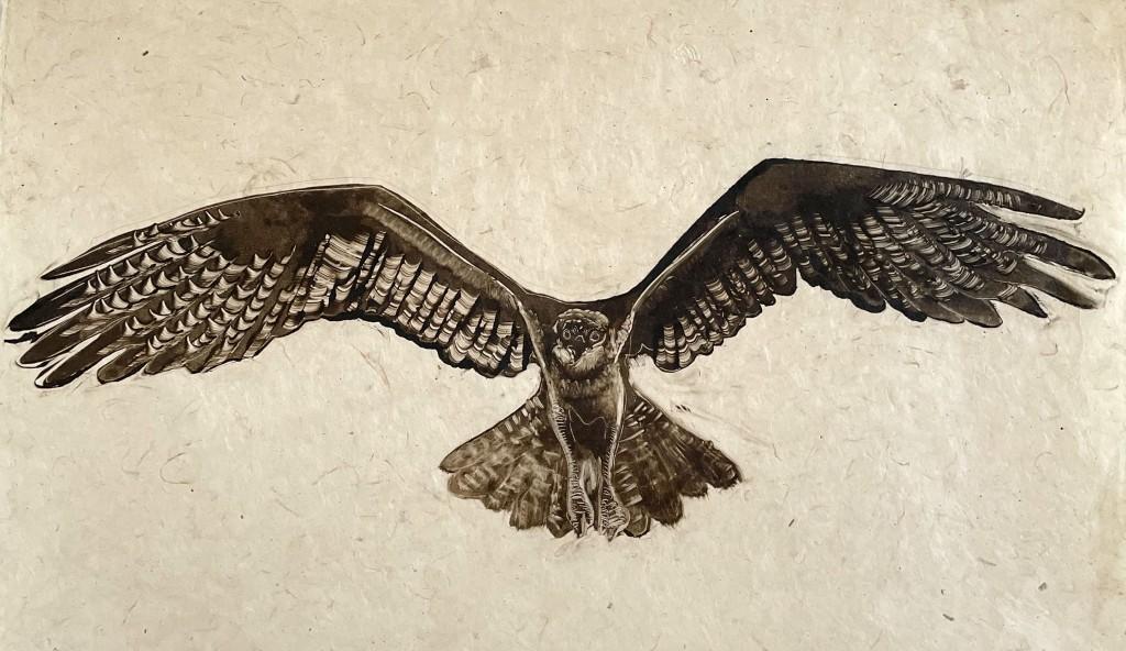 Hawk on rice paper
